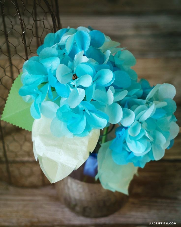 Tissue Paper Hydrangeas & 18 best paper plate flowers images by Juanita Hogue on Pinterest ...