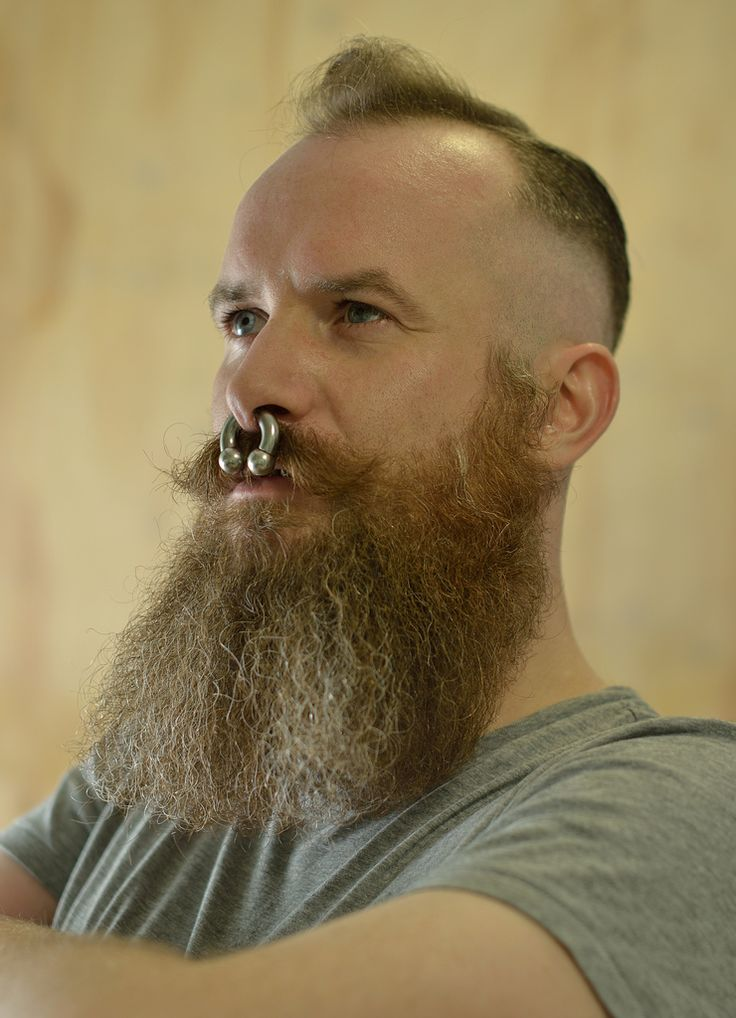 The World's Best Photos of beard and septumpiercing - Flickr Hive Mind