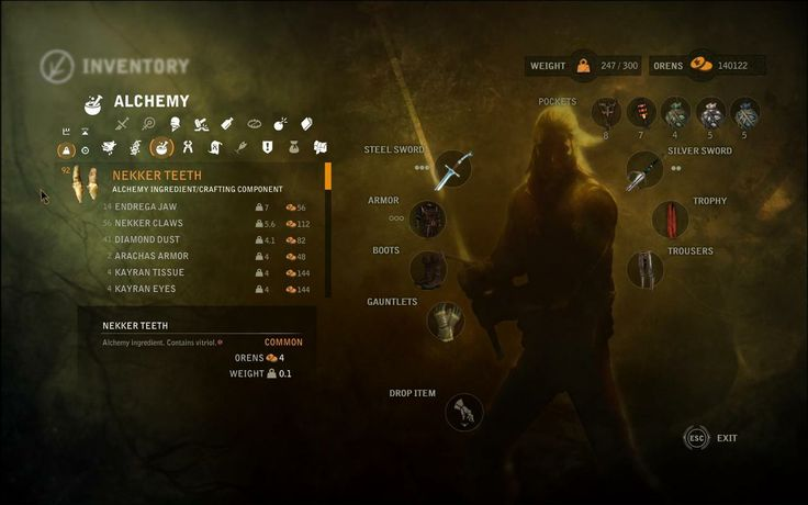 Witcher 2 UI - Inventory
