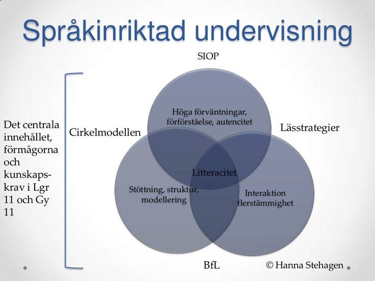 Ny i svenska skolan: språkutvecklande arbetssätt
