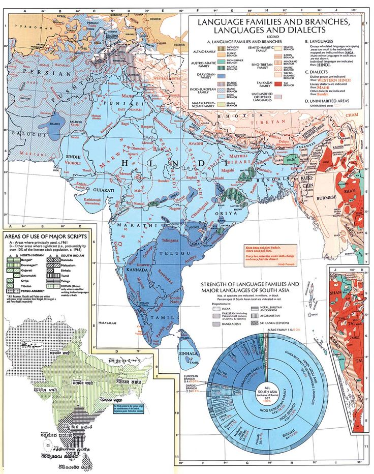 Languages of INDIA and South Asia