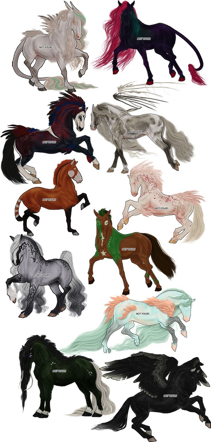 We Need More Cool Horse Variants Horse Drawings Animal