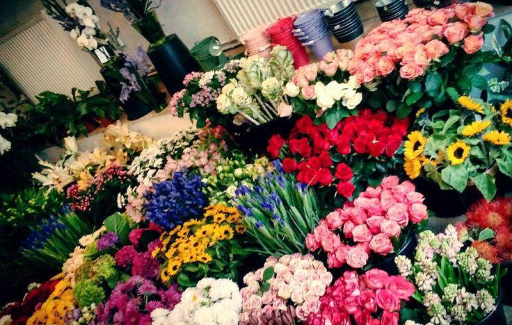 "39 aprecieri, 1 comentarii - Floraria Dorothy's (@florariadorothys) pe Instagram: ""Colors.. #in #flowershop #floricluj #florariecluj #cluj #clujlife #clujnapoca #lifeincluj…"""