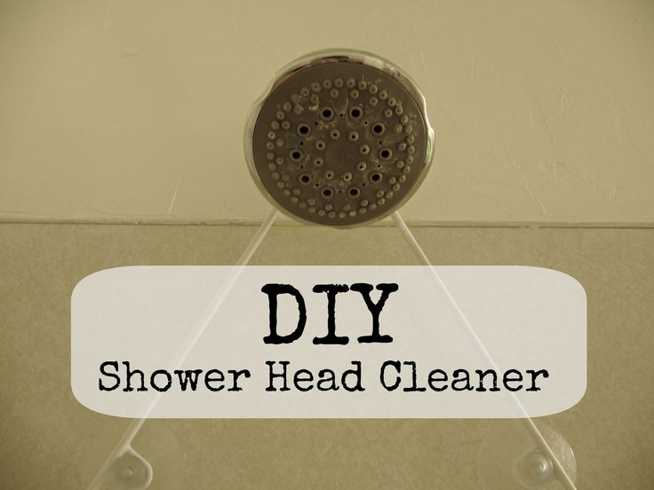 Shower head cleaningBest 25  Shower head cleaning ideas on Pinterest   Shower cleaning  . Cleaning Rain Shower Head. Home Design Ideas