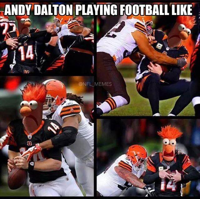 Andy Dalton Playing Football Like…   I Love Me Some Damn ...   640 x 637 jpeg 83kB