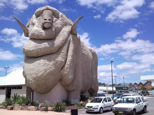 Big Merino - Goulburn, NSW Australia