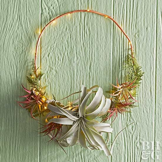 See how to make this beautiful, easy-to-care-for air plant wreath with our step-by-step instructions.