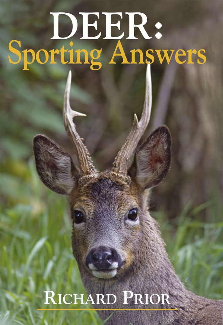 Deer: Sporting Answers by Richard Prior | Quiller Publishing. Deer give rise to many problems: in their management & conservation, connected with their annoying habit of eating tress and garden plants, and withing the practical details of deerstalking. Queries go direct to Richard Prior or through the 'sporting answers' column in the Shooting Times. #deer