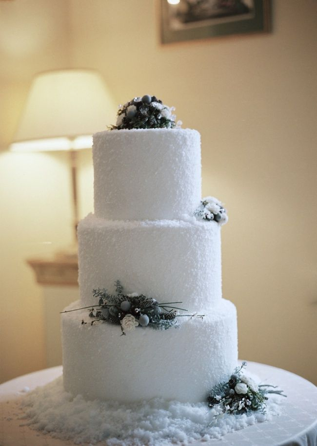 Winter Wedding Cake | Photography: Belle Studio- Esther & Gabe