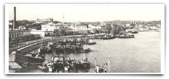 Din Delta Dunării: D'ale Tulcei – partea a 15 a