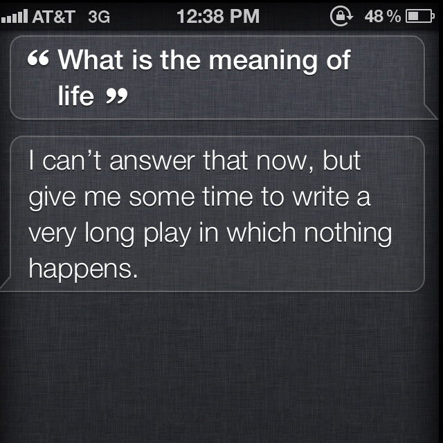Meaning of life according to Siri.