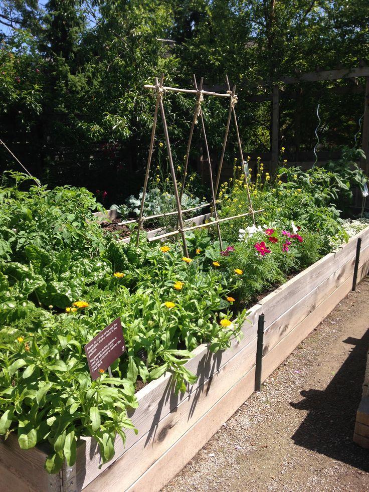 New Garden Ideas 2014 285 best edible garden ideas images on pinterest | edible garden