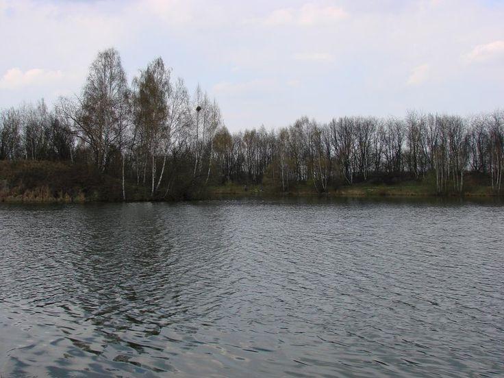 STAWY   NA  KRZYWIU http://www.garnek.pl/bog1dan/9357624/stawy-na-krzywiu