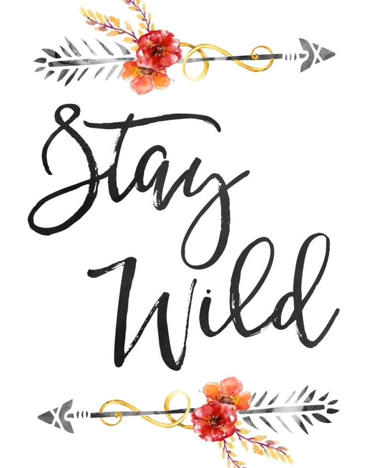 'Stay Wild'
