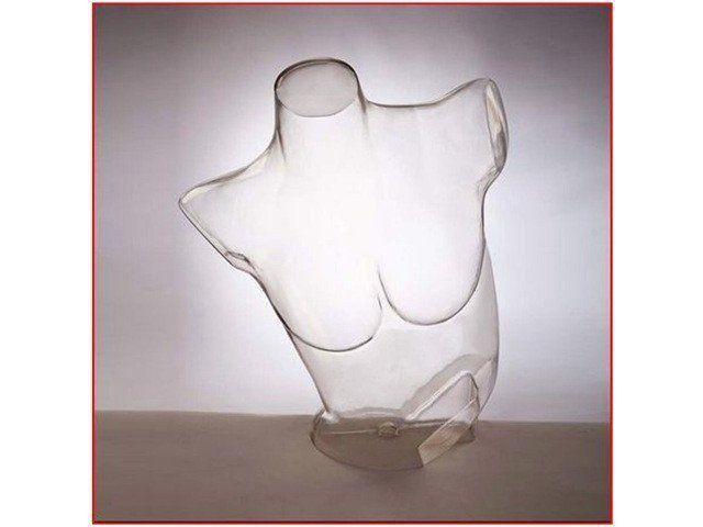 Bra Form -- Clear Plastic