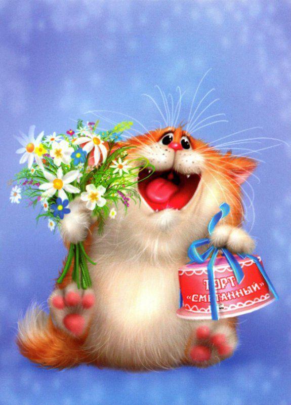 Котик картинка с поздравлением, совы филина прикольные