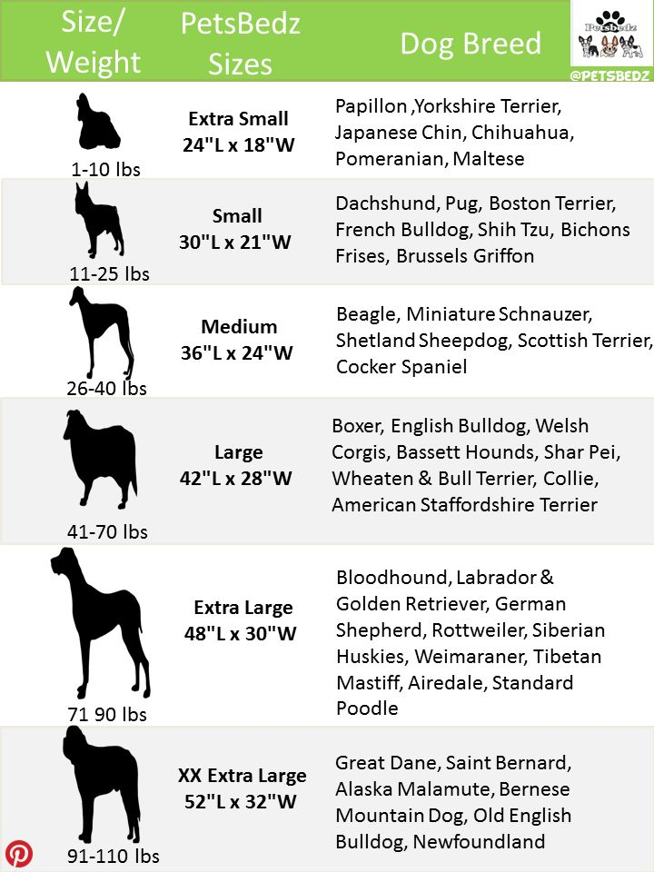 petsbedz-dog-bed-chart.png