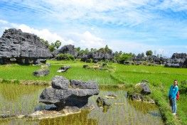 Karst Maros  is the second biggest Karst area in the world after South China Karst, the deepest and longest caves in the world. It also became UNESCO World Heritage Site. It is located in Maros regency< South Sulawesi - Indonesia.