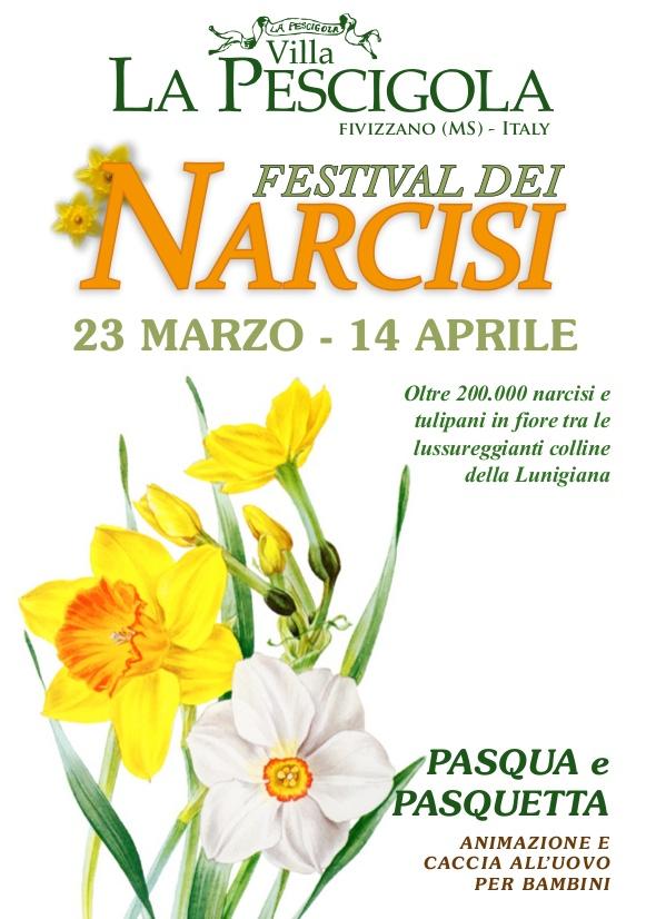 Daffodil Festival 2013