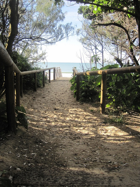 #Mooloolaba #Beach. Walked this path hundreds of times and it still excites my soul......