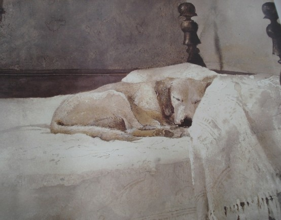 25 best ideas about andrew wyeth art on pinterest