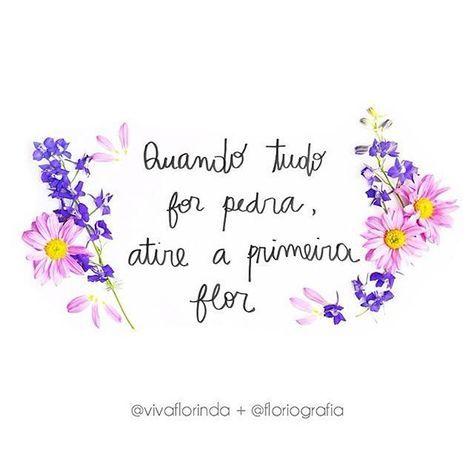 Floriografia transforma flores e palavras em inspiração no Instagram