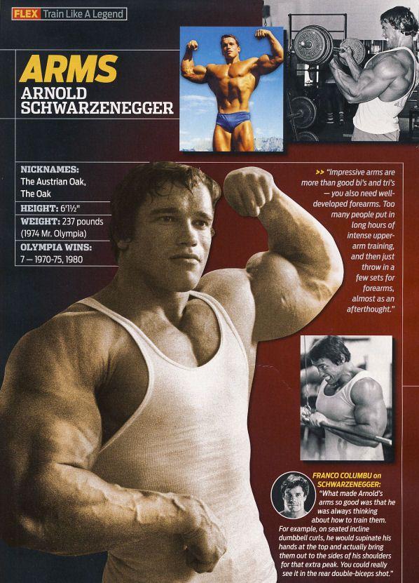 460 best Arnold images on Pinterest Arnold schwarzenegger - new arnold blueprint app