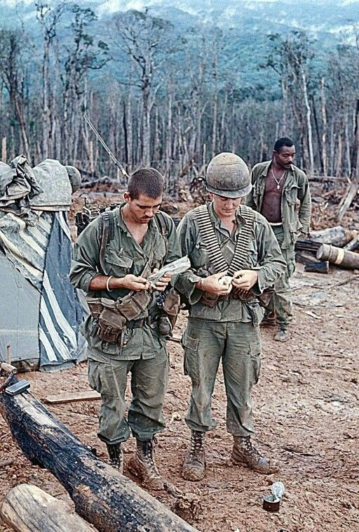 a history of vietnam war in 1969 From 1968 to 1969, cheryl was an army nurse stationed in a combat zone during the vietnam war cheryl reflects on her honor flight experience a duty to protest.
