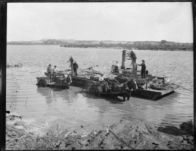 Flax industry workers on a barge loaded with flax on the Manawatu River. Two horse-drawn carts are in the river, and a steam launch is tied up on the far side of the barge. Photograph taken ca 1900s by Louis John Daroux. Transporting flax by barge, Manawatu River. Daroux, Louis John, 1870-1948 :Photographs of New Zealand and the Pacific. Ref: 1/1-039338-G. Alexander Turnbull Library, Wellington, New Zealand. http://natlib.govt.nz/records/23118761