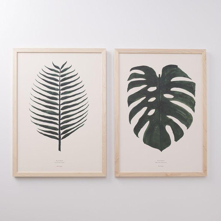 Split Leaf Framed Art | New Art | NEW | #CHASINGTHELIGHT #schoolhouseelectric