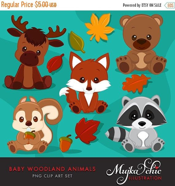 50% OFF SALE Baby Woodland Animals clipart. Baby fox, Baby squirrel, Baby moose, baby raccoon, baby bear graphics with fall laves and acorn.
