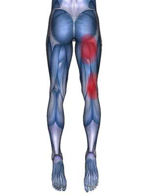 how to build upper buttock muscles