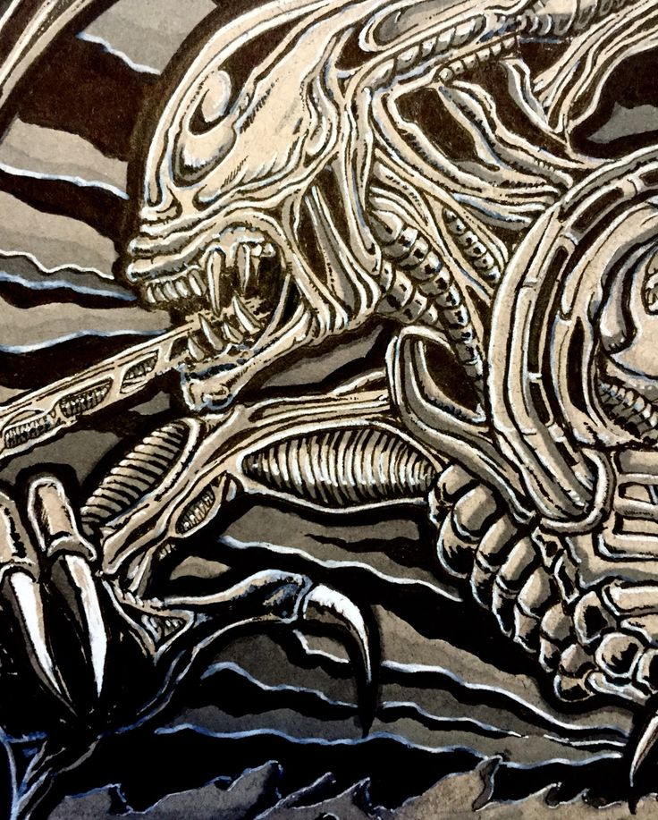 Close up detail ( fine liner & copic marker on tonal )