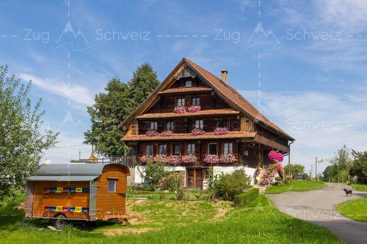 Oberhalb von #Walchwil ZG im Kanton #Zug in der Schweiz (Switzerland)