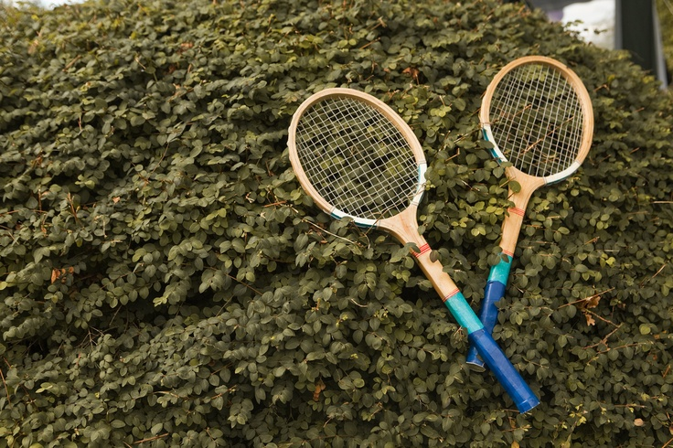 Another charity shop find (tennis racquets, not the hedge)