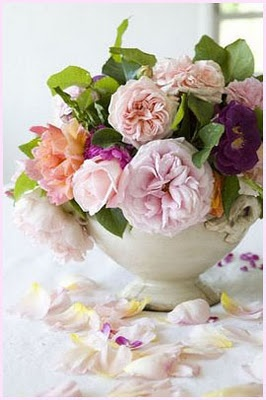 Pretty flowers: Beautiful Flower, Floral Design, Shabby Flower, Color Stories, Flower Power, Gardens Rose, Fresh Flower, Floral Arrangements, English Rose