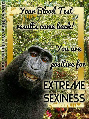 d50ec2d9fb9b00d42bea35d9d831611a workout memes blood test 79 best funny spoonie memes images on pinterest chronic pain,Positive Chronic Illness Memes