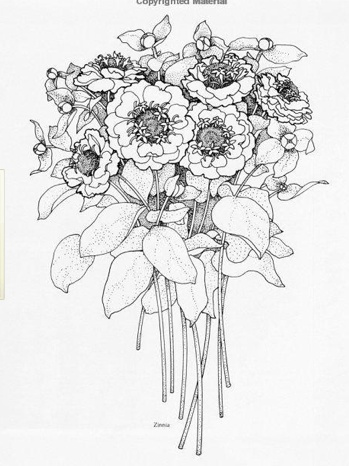 how to draw a wedding bouquet