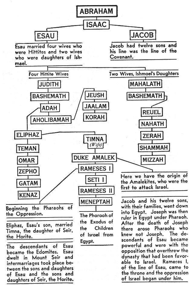 genealogy of Abraham and down