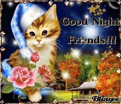 Ich wünsche Dir eine ganz gute Nacht