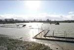 Il Blog di Bruno Pino: Appello per Sibari»  Sibari è scomparsa sotto milioni di metri cubi di acqua e di fango a causa di un cedimento, le cui cause devono essere ancora accertate, degli argini del fiume Crati. Le idrovore stanno ancora pompand...