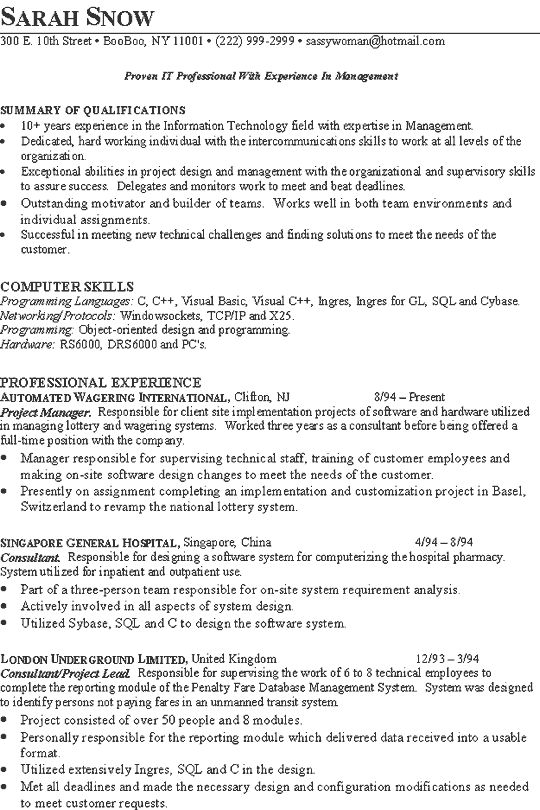 Technical Experience Resume Example - Template