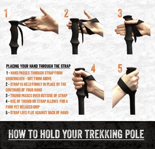 All about Trekking Poles- How to fit & use