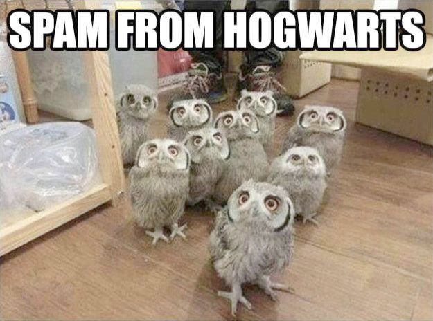 Harry Potter Series Tamil Dubbed Concerning Harry Potter And The Cursed Child In Hindi Do Harry Potter Memes Harry Potter Memes Hilarious Harry Potter Pictures