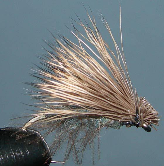 CDC Elk Caddis trout fly