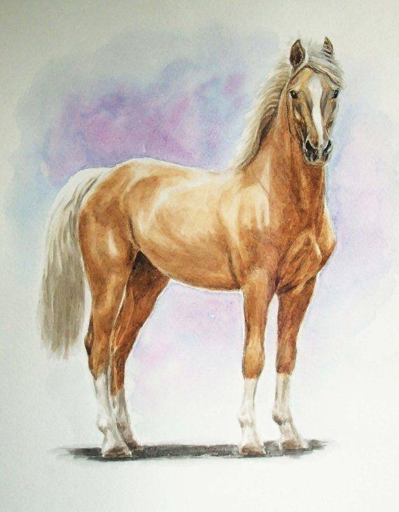 Draw Cartoon Horses - Step by Step