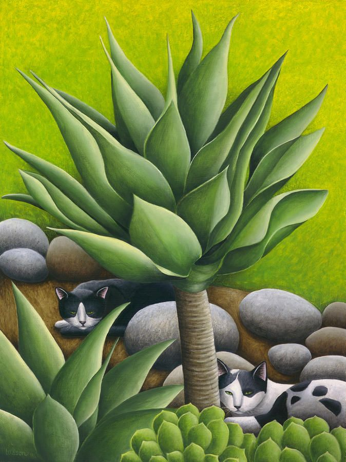 Black And White Cats With Agaves Painting