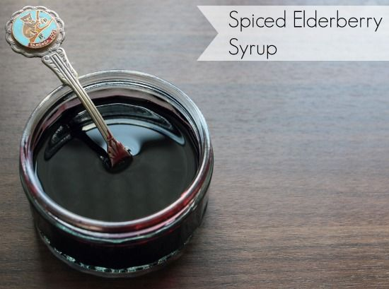 The best elderberry recipe ever - spiced elderberry syrup.  So tasty and versatile: http://moralfibres.co.uk/delicious-spiced-elderberry-syrup/