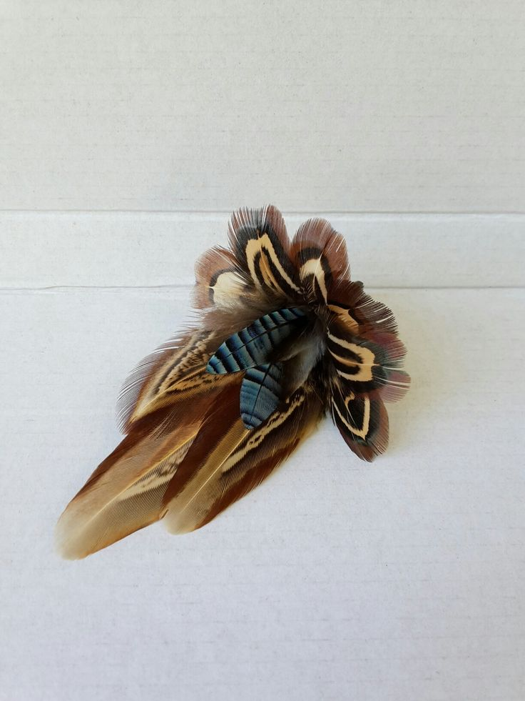 pheasant and jay feather pin, hatpin, brooch, buttonhole from http://countrycraftybits.co.uk/