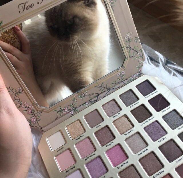 vintage #hipster #grunge #alternative #photography #aesthetic #makeup #eyeshadow #too faced cosmetics #too faced #eyeshadow palette #mirror #cat #cute animals #animals #cute #cute cat #Moda #Kombinler #Kombin_Önerileri #Sokak_stili #fashion #Güzellik #ünlüler #ünlü_Modası #Cilt_Bakımı #Saç_Modelleri #Abiyeler #Abiye_modelleri #Magazin #Tarz #Kuaza